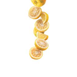 Yuzu citronu sīrups 1L