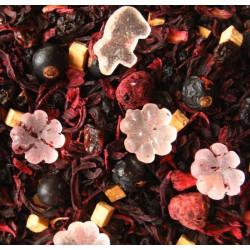 Exotic Dream augļu tēja ar augļu gabaliņiem 100gr