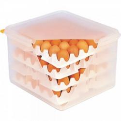 Olu kaste